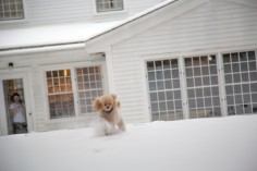 snowday_10